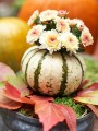 pumpkin-as-vase
